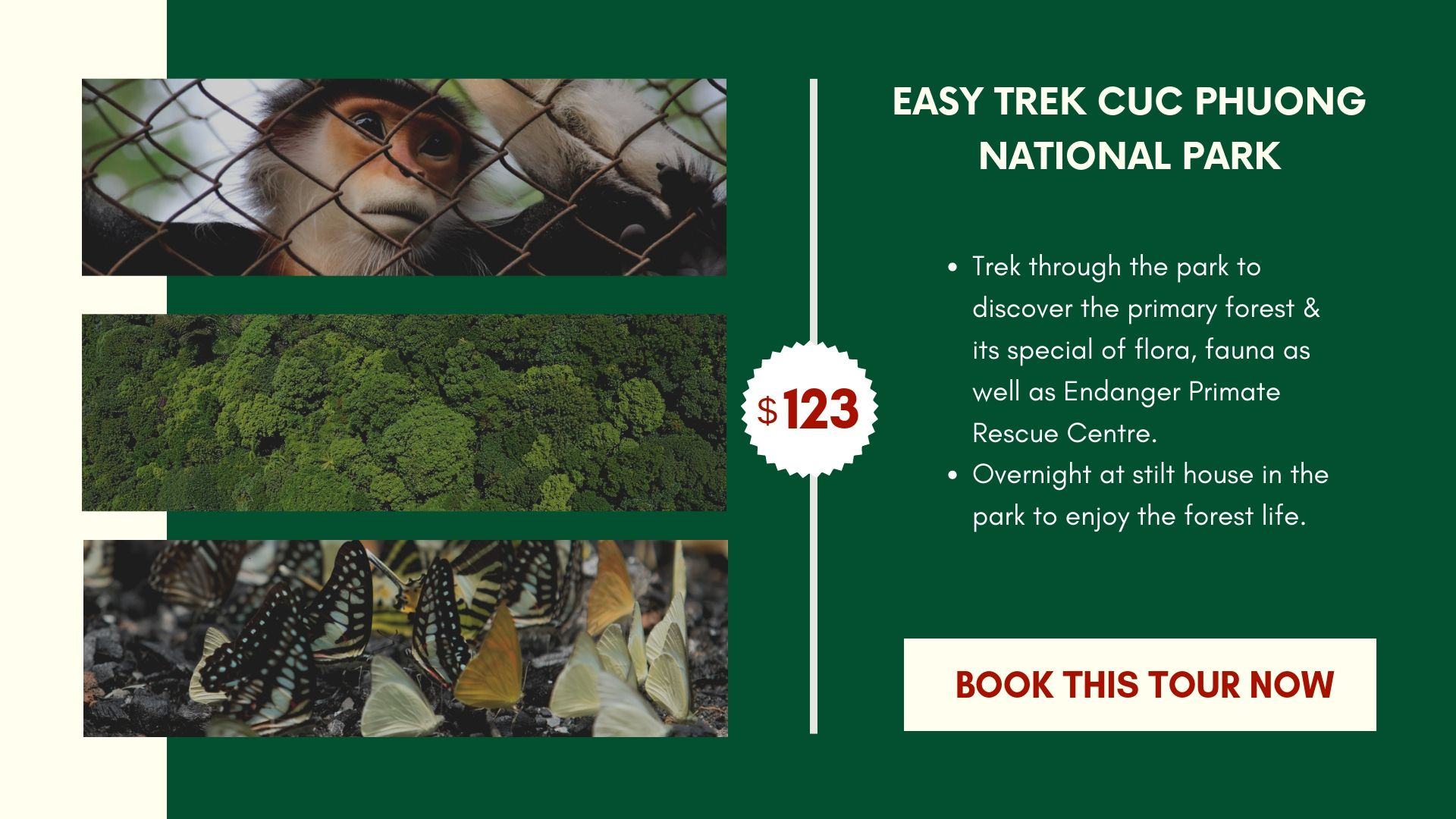 Cuc Phuong National Park Tour - 02 days