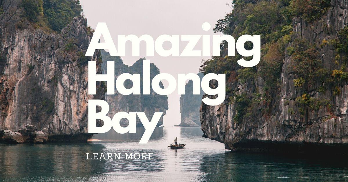 Book best trip in Halong Bay Vietnam