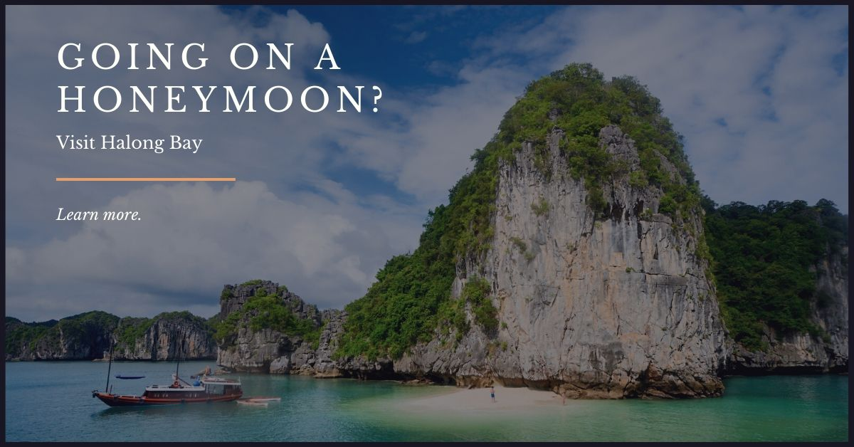 find best tour in Halong