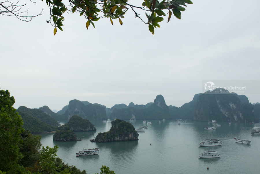 View Halong Bay from Bai Tho mountain