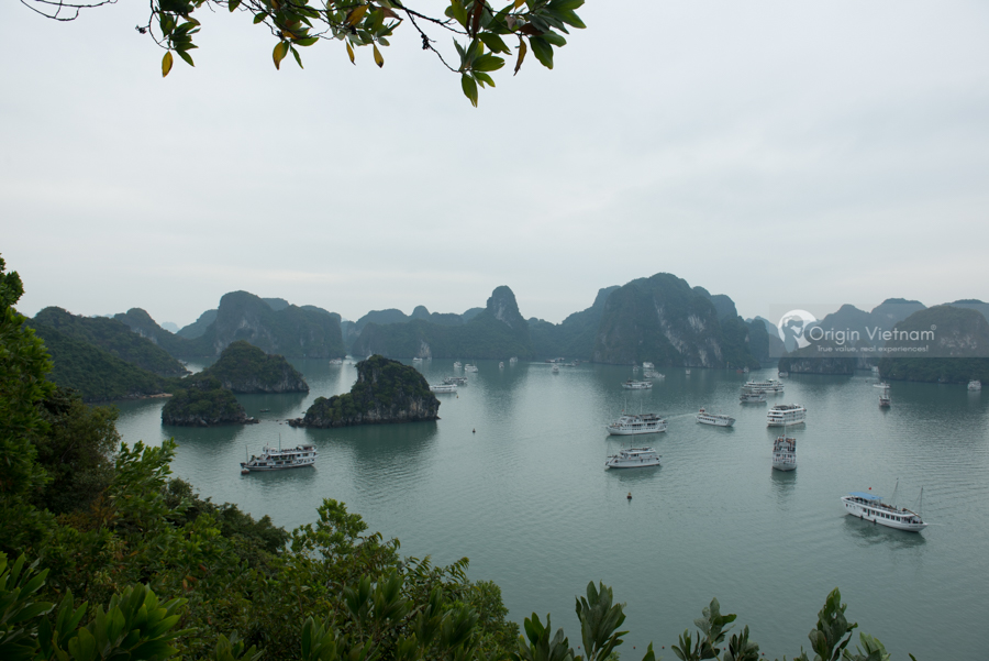 Halong Bay on spring