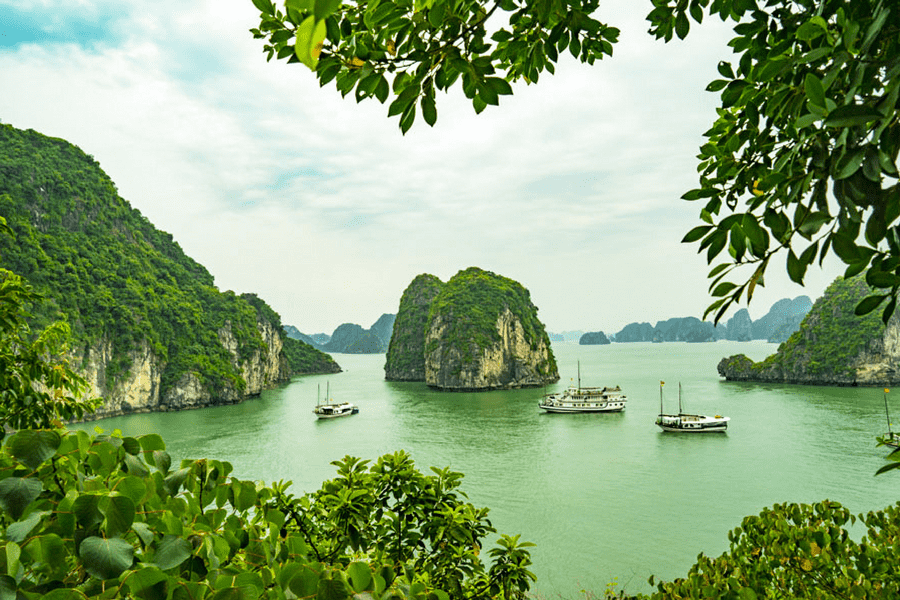 Bai Tu Long Bay - How To Visit Halong Bay From Hanoi City