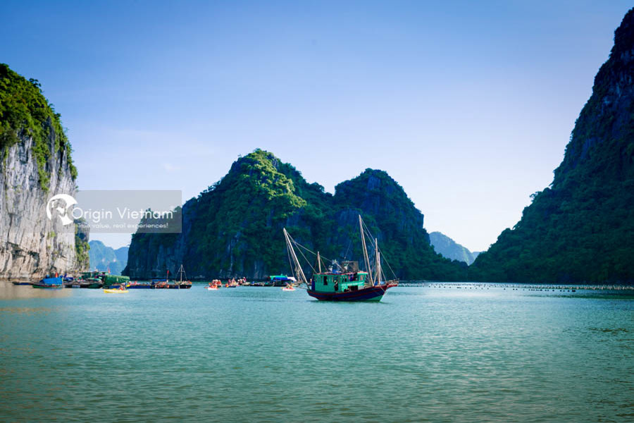 Halong Bay - Best Place To Visit North Of Vietnam On June