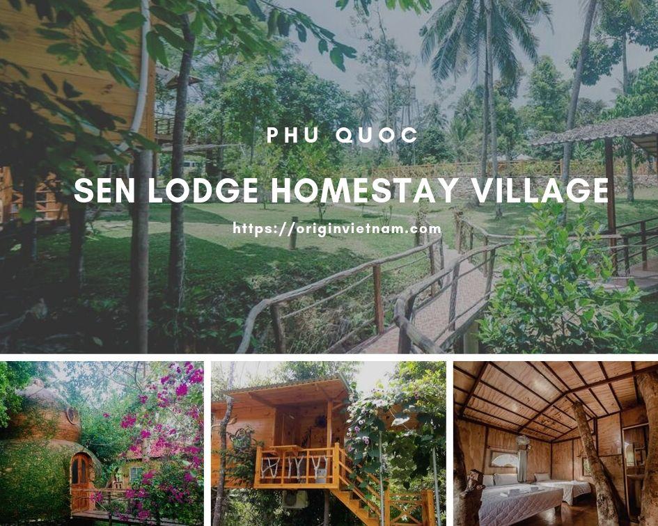 Top 5 Homestay With Green Garden In Phu Quoc Island, ORIGIN VIETNAM