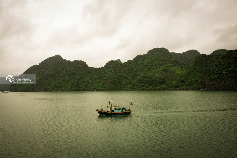 The bamboo boat in Halong Bay