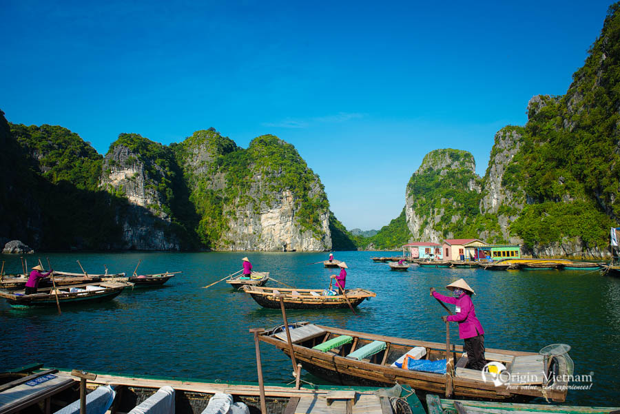 visit floating village in Bai tu Long Bay | Paloma cruise halong Bay cruise 2 days