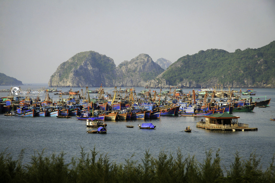 Place not to be missed in Cat Ba, ORIGIN VIETNAM