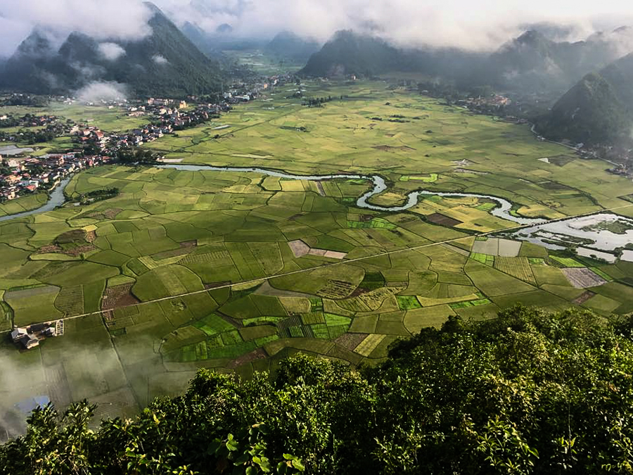 Rice field view from Mount Na Lay