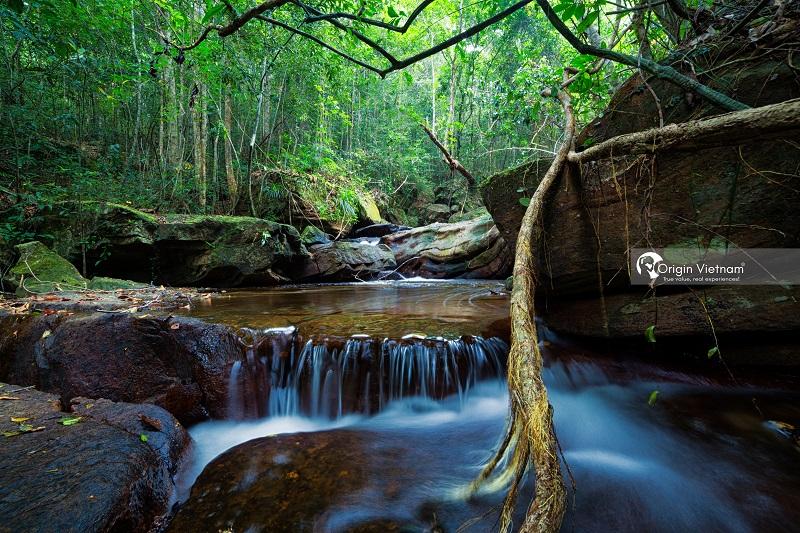 Suoi Tranh Waterfall, ORIGIN VIETNAM