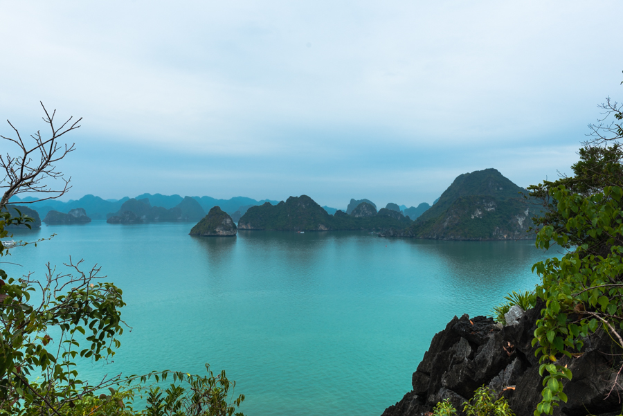 images how to book cruise in halong bay