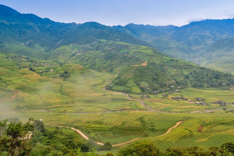 Rice field at Lim Mong village
