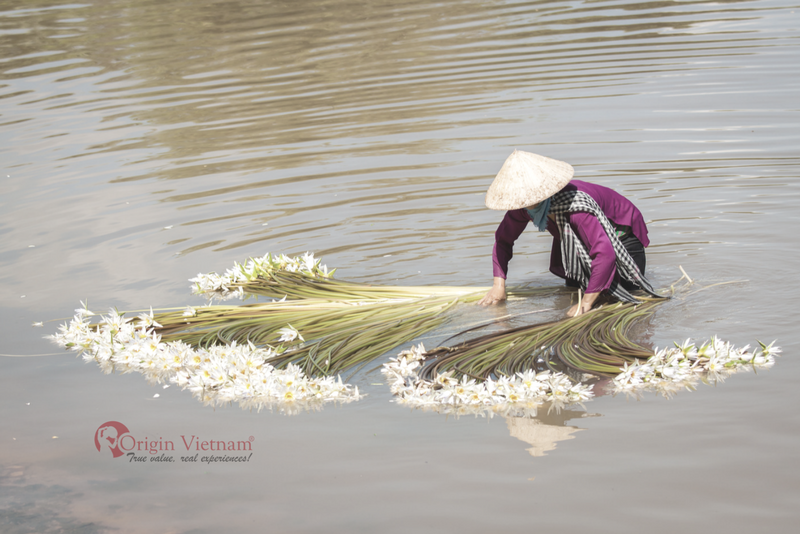 travel to vinh long on October is a great for photographer take many beautiful photo